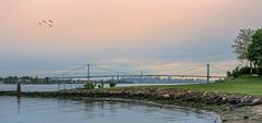 Bronx-Whitestone Bridge (JMS2) Tags: nyc bridge skyline crossing sony eastriver mta borough span bronxwhitestonebridge