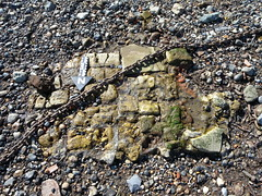 Brick surface (Thames Discovery Programme) Tags: london archaeology training community riverthames rotherhithe thamesdiscoveryprogramme fsw03