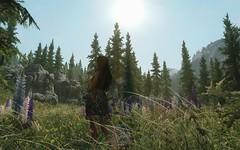 TESV 104 (Somoon_N) Tags: skyrim tesv tes screenshot virtual games fantasy enb