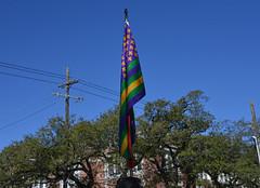 Mardi Gras Flag (BKHagar *Kim*) Tags: street carnival party sky green gold la louisiana purple flag neworleans parade celebration napoleon nola fleurdelis mardigras prytania bkhagar
