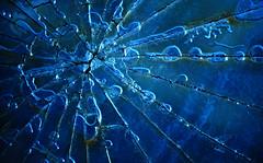 abstract (jtr27) Tags: macro broken glass sony maine newengland 55mm junkyard alpha vivitar manualfocus f28 a7 csc minoltamount ilce alpha7 mirrorless komine jtr27 ilce7 dsc01848e