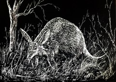 Aardvarky Sort of Day (Dodge City Marshal) Tags: art outdoors wildlife scratch aardvark scratchboard marshalallenbailey