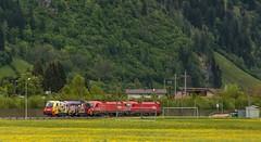1437_2016_05_24_sterreich_Dorfgastein_BB_1x16_xxx_&_1116_260_Europischer Lokfhrerschein_&_1216_1216_141_AMTC (ruhrpott.sprinter) Tags: railroad schnee salzburg train germany logo deutschland graffiti austria ic sterreich diesel natur wiese eisenbahn rail zug cargo 64 berge nrw passenger es lm blume fret ore gelsenkirchen ruhrgebiet f4 freight bb badgastein locomotives 189 lokomotive amtc cityshuttle sprinter badhofgastein ruhrpott gter 1144 dorfgastein ekol 1116 dispo europischer 6189 mrce tauernbahn lokomotion reisezug rpool dispolok nordrampe ellok cargoserv logserv intercombi lokfhrerschein gastainertal rocktainer