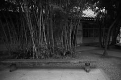 _1 (Taiwan's Riccardo) Tags: ltm bw digital taiwan rangefinder fixed l39  colorskopar 2016 28mmf35  kodakccd leicam9 voigtlanderlens