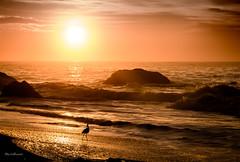 Praia de Abric - Rio de Janeiro (mariohowat) Tags: brazil brasil riodejaneiro sunrise natureza amanhecer nascerdosol rio2016 praiasdoriodejaneiro praiadeabric