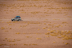 Landcruiser in the expanse of the altiplano of Bolivia (Phil Marion) Tags: travel wedding boy vacation people woman hot sexy ass beach girl beautiful beauty sex canon naked nude nipples slim boobs nu candid dick young hijab nackt explore teen tranny xxx chubby plump  burqa nudo desnudo dink  nubile telanjang schlampe    5photosaday explored  thn nijab    kha    malibog    philmarion         saloupe