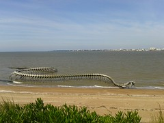 St-Brévin-les-Pins: Giant snake skeleton by Huang Yong Ping [Explore] (Sokleine) Tags: