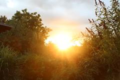 Sunset again (Marcell Krpti) Tags: light sunset summer sky sun clouds lights scenery hungary afternoon naplemente goldenhour pszt