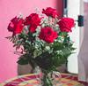 IMG_4182 (Josy'ta) Tags: rose rosas rosascolombianas flowers flores flor diadosnamorados love