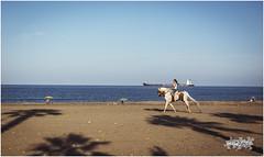 (seb@foto) Tags: sea summer costa azul caballo mar heaven playa paisaje arena cielo verano jinete amazona huellas cabalgando cabalgar orilladelmar