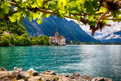 Castle View on Lake Geneva, Chillon Castle, Switzerland (George Oze) Tags: travel lake alps castle horizontal architecture landscape switzerland colorful europe fort gothic scenic nobody lakeside historic trellis romantic daytime fortification romanesque quaint alpinelake grapevine ch lakegeneva lacleman vaud historicmonument chteaudechillon chilloncastle snowypeaks emeraldblue lowangleview veytaux lakesandrivers islandcastle vaudcanton buildingexteriors underatrellis vinegrowingregion