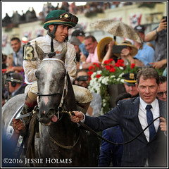 Creator and Bobby Flay (Spruceton Spook) Tags: horses horseracing creator bobbyflay belmontpark belmontstakes iradortizjr
