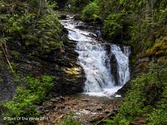 Sweet Creek Falls (jimgspokane) Tags: mountains falls waterfalls washingtonstate forests creeks sweetcreekfalls nikonflickraward