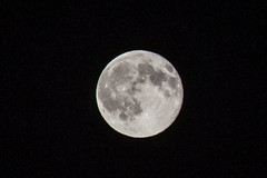 Blue Moon, July 31, 2015 (marylea) Tags: summer moon fullmoon bluemoon 2015 jul31