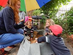 DSCN3888 (joonseviltwin) Tags: garden community cardiff roath mackintosh