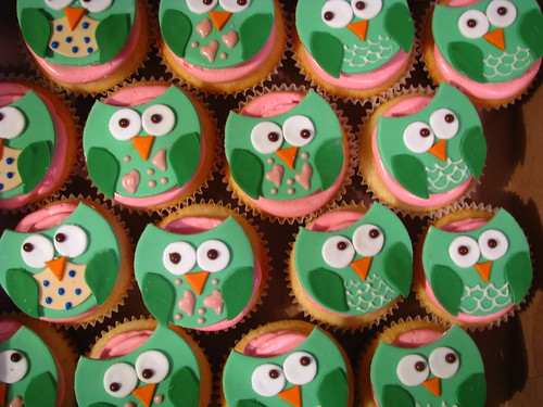 What are all those owls looking at?