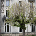 "L'ancien collège du parc • <a style=""font-size:0.8em;"" href=""http://www.flickr.com/photos/53131727@N04/6999738752/"" target=""_blank"">View on Flickr</a>"