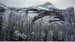 Royal Arches, Snowy Morning (tanngrisnir3) Tags: trees winter snow storm landscape ngc yosemitenationalpark yosemitevalley royalarches calfiornia stonemanmeadow everythingscenery