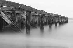 Lonley Pier (hurleyboy97915) Tags: field san francisco long exposure filter nd daytime chrissy variable