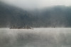 Morning at Uvac Lake, Serbia (Irene Becker) Tags: mountain nature forest landscape countryside serbia 2010 balkan srbija srb zlatar srpskoselo uvac canon7d bestcapturesaoi irenebecker увац uvackojezero irenebeckerorg imagesofserbia southwesternserbia uvaclake uvacmeanders