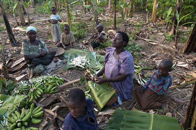 africa-uganda-food-prep-women