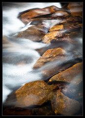 On the Rocks (Josh Merrill Photography) Tags: nature water rock creek river flow photography illinois spring stream photographer bell joshua smith il josh nationalforest photograph shawnee allrightsreserved merrill southernillinois shawneenationalforest bellsmithsprings joshmerrillphotography joshmerrillphotographycom copyjoshmerrillphotography