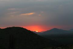 Puesta de sol, Chongoyape (ddourojeanni) Tags: sunset cactus mountains per puestadesol montaas lambayeque chaparri chongoyape