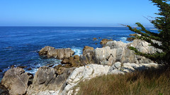 Pacific Grove 5-7-12 Paula Pic (2) (Photo Nut 2011) Tags: pacificgrove california monterey berwickpark
