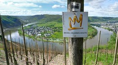 Mosel.Erlebnis.Route (Bn) Tags: blue sky panorama horse mountain nature water ecology river germany landscape geotagged deutschland shoe vineyard spring scenery wolf village wine path panoramic vineyards crop grapes vista environment crops winding agriculture curved viewpoint uturn environmentalism grape mosel riesling ecosystem rheinlandpfalz slopes moselle vinyards krv agronomy moesel rhinelandpalatinate krov ubend winegrowing fruitcrops panview geo:lon=7108154 wijnleerpad geo:lat=49985973 moselerlebnisroute