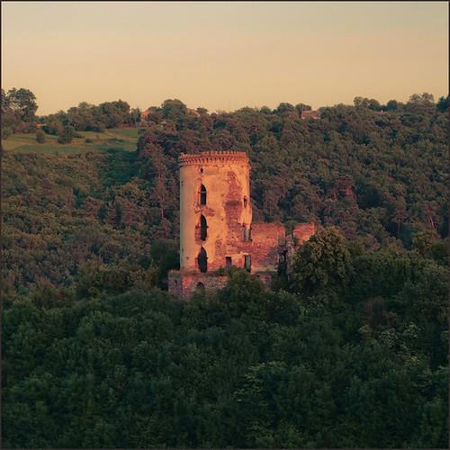Червоногрудський замок