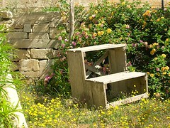 Work bench at the Msida Bastion Historic Garden (r3nn3r) Tags: cemetery bench banco malta camposanto florianamalta msidabastionhistoricgarden