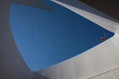 Flying Free at Sundial Bridge (Paula Wirth) Tags: portrait abstract fly victory turtlebay aloft sundialbridge sundialbridgeatturtlebay foursquare:venue=4b4d7200f964a5206dd226e3