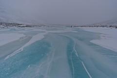 为什么不是这个人的《冰,风和雪》,在Flickr上