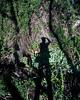 (Andrés Medina) Tags: selfportrait film rio river spain shadows 6x7 elrio andresmedina