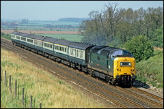 55008 Marston 10May80 (david.hayes77) Tags: napier marston deltic ecml class55 55008
