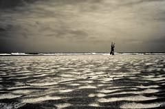 Seul sur le sable... - Steve.© -