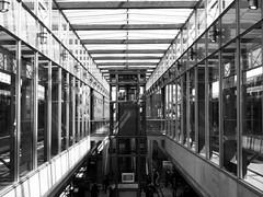 203/365 - Central Station (Martin Schmidt (www.schmaidt.de)) Tags: white black station project und track year central struktur hannover structure days hauptbahnhof tage 365 jahr schwarz projekt iphone gleis weis