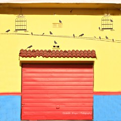 Garage Door (lizbeth ) Tags: door blue red art birds yellow rouge rojo puerta mural blu wallart vermelho bleu amarillo giallo framing draw rosso garagedoor cages jaulas clicktogether