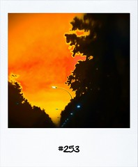 """#DailyPolaroid of 7-6-12 #253 • <a style=""""font-size:0.8em;"""" href=""""http://www.flickr.com/photos/47939785@N05/7374249956/"""" target=""""_blank"""">View on Flickr</a>"""