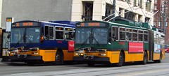 King County Metro Breda Trolley 4244 and 4255 (zargoman) Tags: seattle county travel bus electric king metro trolley transportation transit converted breda articulated kiepe elektrik kingcountymetro highfloor
