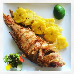 """Dominican Lunch: Red Snapper and fried Plantains (""""Rooster"""") Tags: dominicancuisine sheratonsantodomingo friedplantains grilledfish redsnapper"""