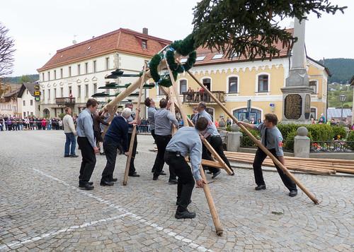 Tradition Maibaumstellen in Lam 03 (160501 - Böhmerwald / Bayerischer Wald - Germany)