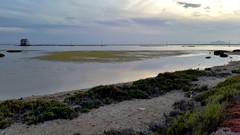 Salinas y Arenales de San Pedro del Pinatar 203053 (Gabriel Navarro Carretero) Tags: sunset sea mar salinas puestadesol marmenor sandbanks mares arenales sanpedrodelpinatar