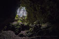 Green cave [Explore] (Giandomenico Tricomi) Tags: italy green nature volcano lava nikon tube adventure sicily cave etna grotta d610 palombe