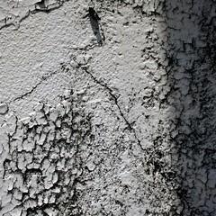 Stuff on Walls - !!! Happy Tuesday's Textures!!! (LarryJay99 ) Tags: white texture abandoned peeling shadows decay westpalmbeach abandon cracks westpalmbeachflorida 52260mm