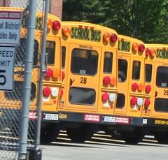 Shenendehowa CSD #28 (ThoseGuys119) Tags: vision albany bluebird schoolbus blackout icce freightliner capitalregion thomasbuilt cliftonparkny shenendehowacsd