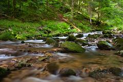 Black Forest (tecgen) Tags: deutschland schwarzwald blackforest badenwrttemberg oppenau allerheiligenwasserflle allerheiligenwaterfalls