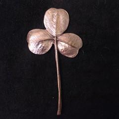 rplique de feuille de trfle en bronze (Les Bijoux de Jane (Jane Quillerat)) Tags: bronze brooch handmadejewelry bronzeleaves whitebronze bronzeclay lesbijouxdejane
