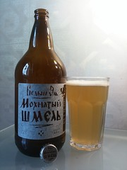 "White Ale ""Shaggy bumblebee"", 1L (m_y_eda) Tags: beer bottle ale bumblebee shaggy garrafa flasche botella bouteille bottiglia  butelka    yotaphone"