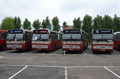 11.06.2016 (X); 50 jaar standaardbus (chriswesterduin) Tags: hbm htm